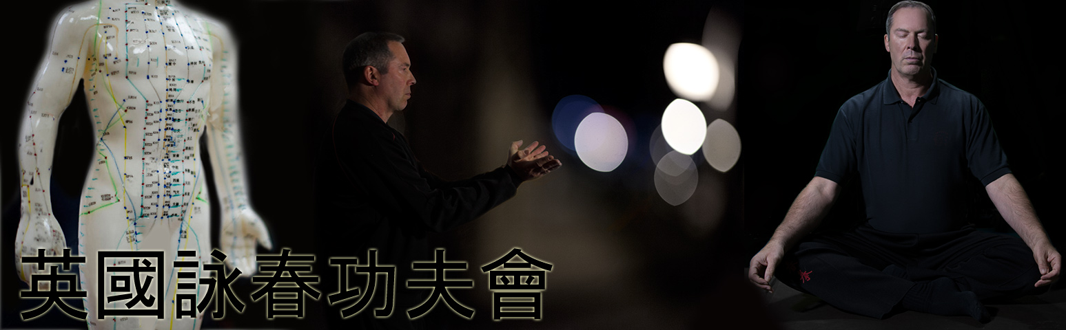 Wing Chun Chinese Martial Art